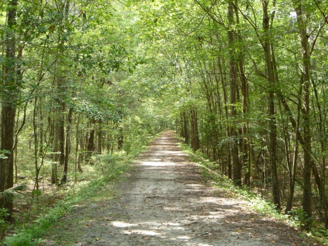 A Beautiful Trail in Green Acres Nature Park